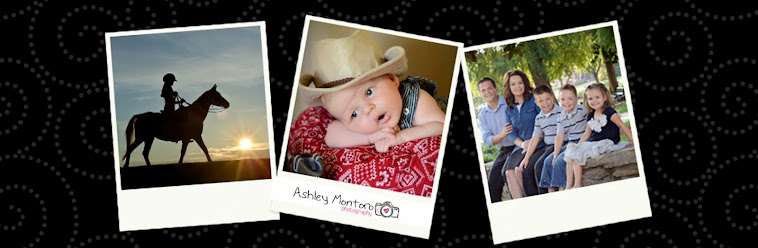 Ashley Montoro Photography