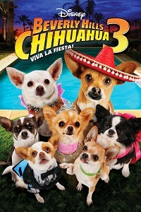 Un Chihuahua en Beverly Hills 3