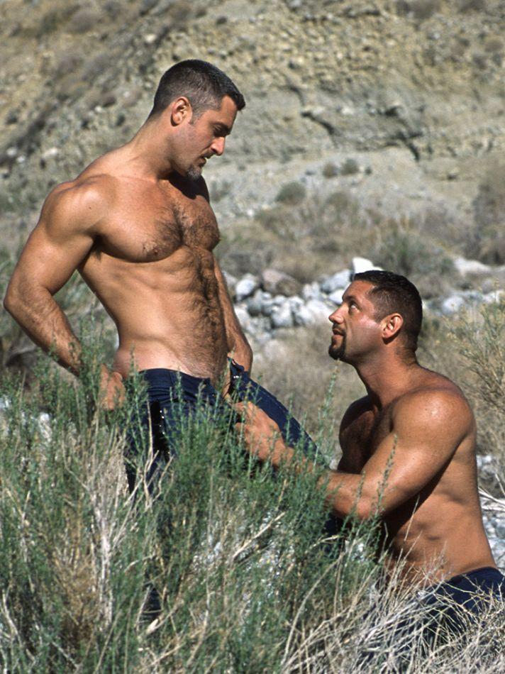 daily bodybuilding motivation hot male models colton ford amp blake