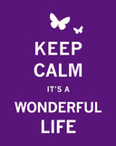 Keep Calm its a wonderful life