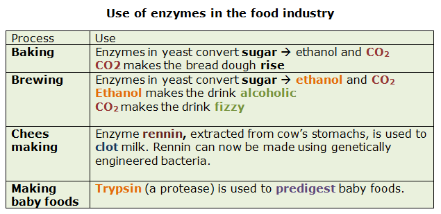 What Enzymes Are Used In Baby Food