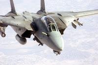 TOMCAT Sang Serangga Atau Pesawat Tempur | Galeri Info Unik