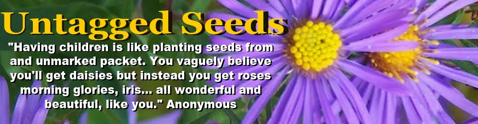 Untagged Seeds