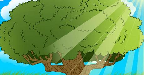 kumpulan gambar pohon kartun lucu gambar pohon buah tree pictures