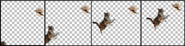 Sequência Gato e Pássro