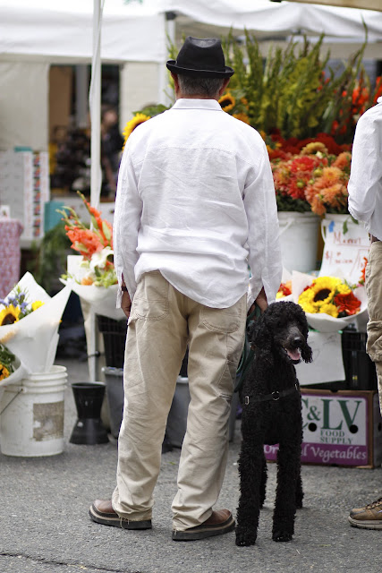Ballard Farmers Market Flowers Poodle