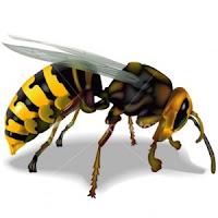 Sengatan Lebah Vs Sengatan Nafsu