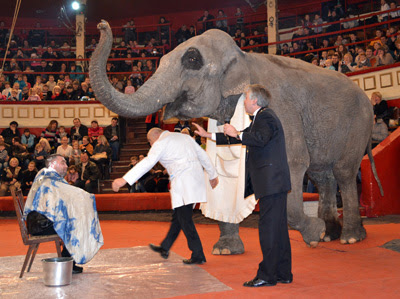 Фото Укринформ: слон-брадобрей