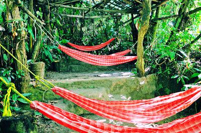 Campamento El Pezma en Tomata, Tlapacoyan, Veracruz.