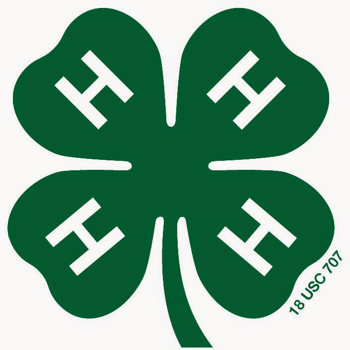 4-H/Youth Development Program