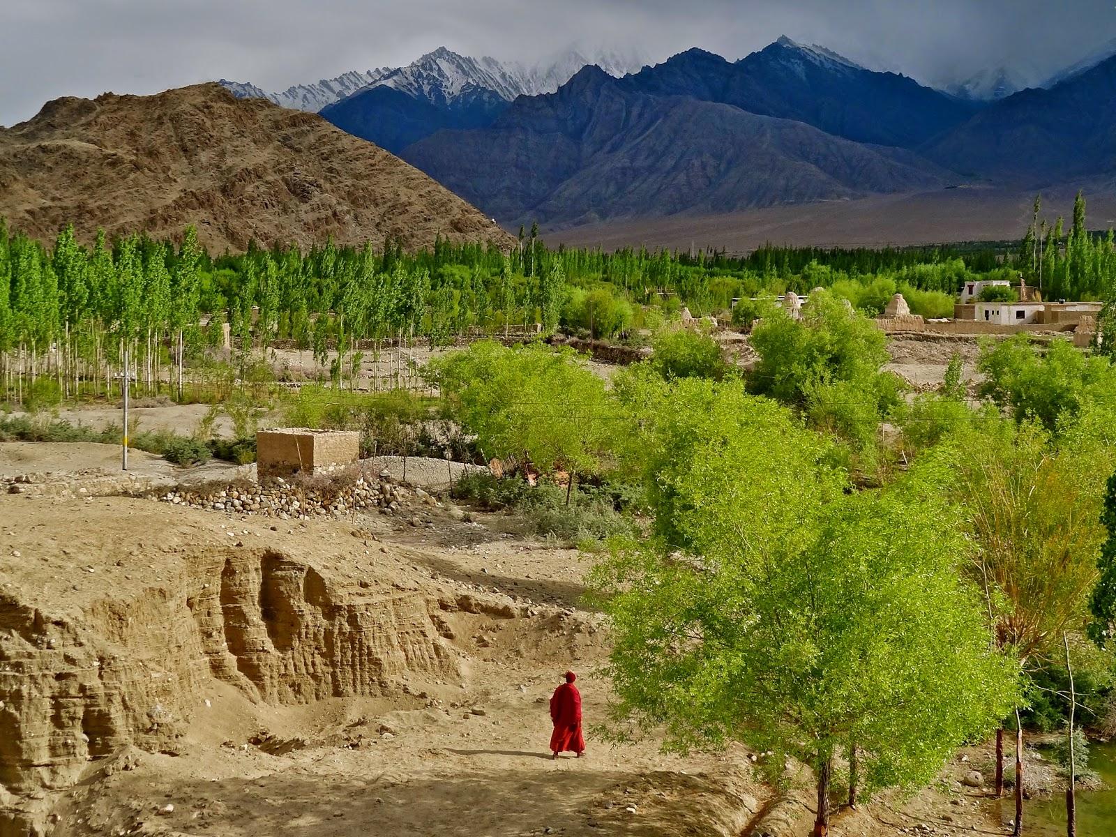 Ladakh nunnery, Leh Ladakh travel guide