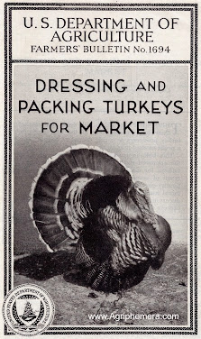 Dressing and Packing<br>Turkeys for Market (1932)