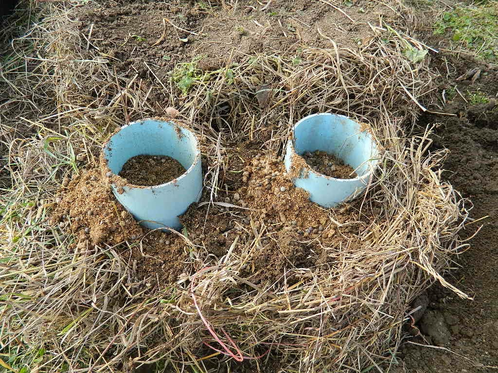 Hay Bale Gardening: Hay Bale Gardening Revolution