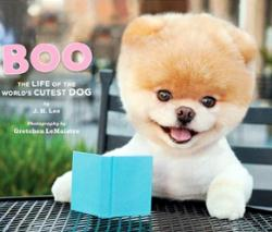 A Book on Boo