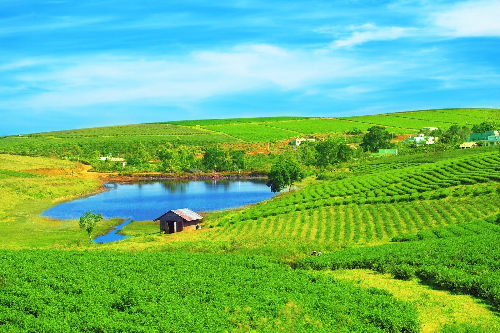 Banco de im genes para ver disfrutar y compartir qu - Casas rurales en el campo ...