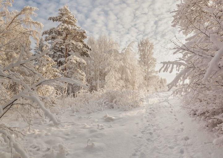 winter landscapes-3