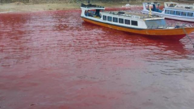 Fenomena Air Laut Merah Pulau Ai,Kepulauan Banda - Maluku