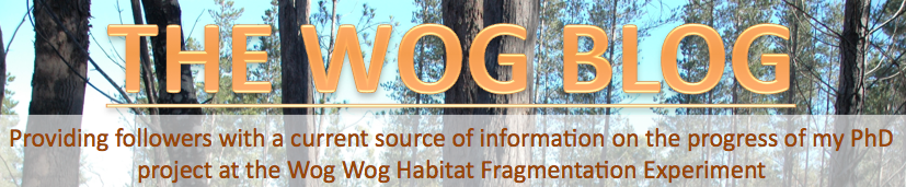 The Wog Wog Habitat Fragmentation Experiment
