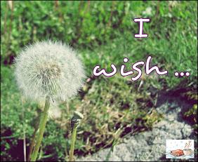 ¡Lista de deseos!