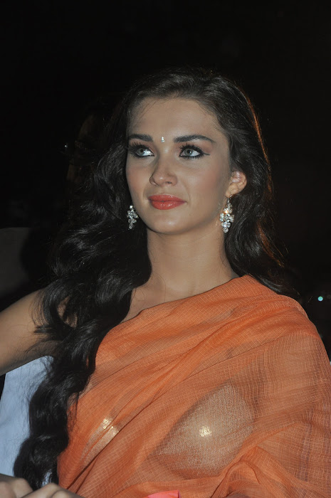 amy jackson spicy at thandavam audio launch photo gallery