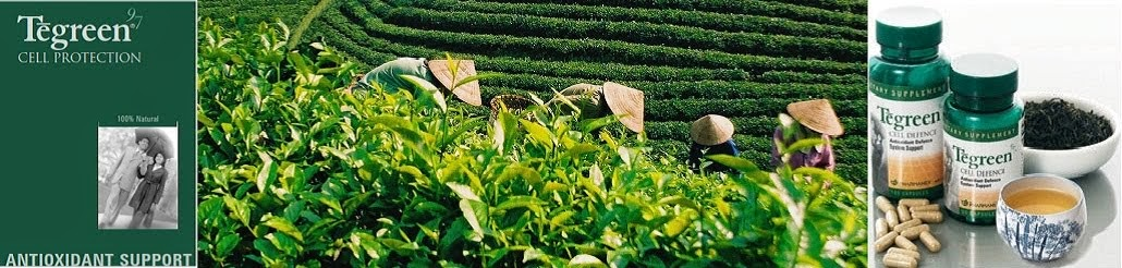 trà xanh Nu Skin Tegreen 97 trở nên độc đáo