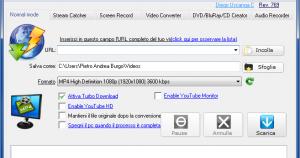 Top 10 IE Video Downloader