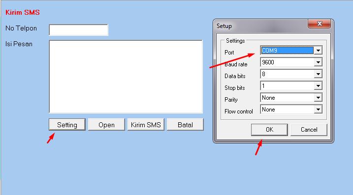 program sms gateway dengan delphi