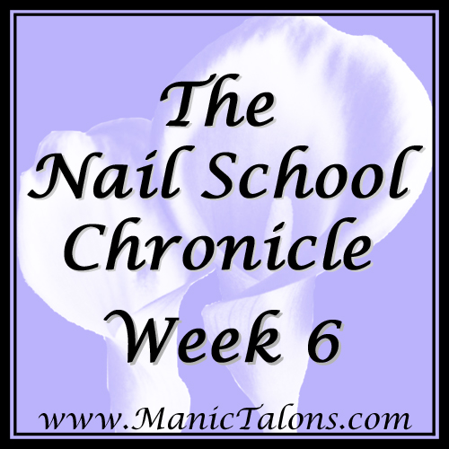 The Nail School Chronicle Week 6
