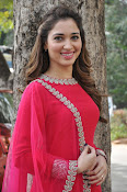 Tamanna latest glam pics at Bengal Tiger event-thumbnail-10