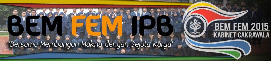 BEM FEM IPB