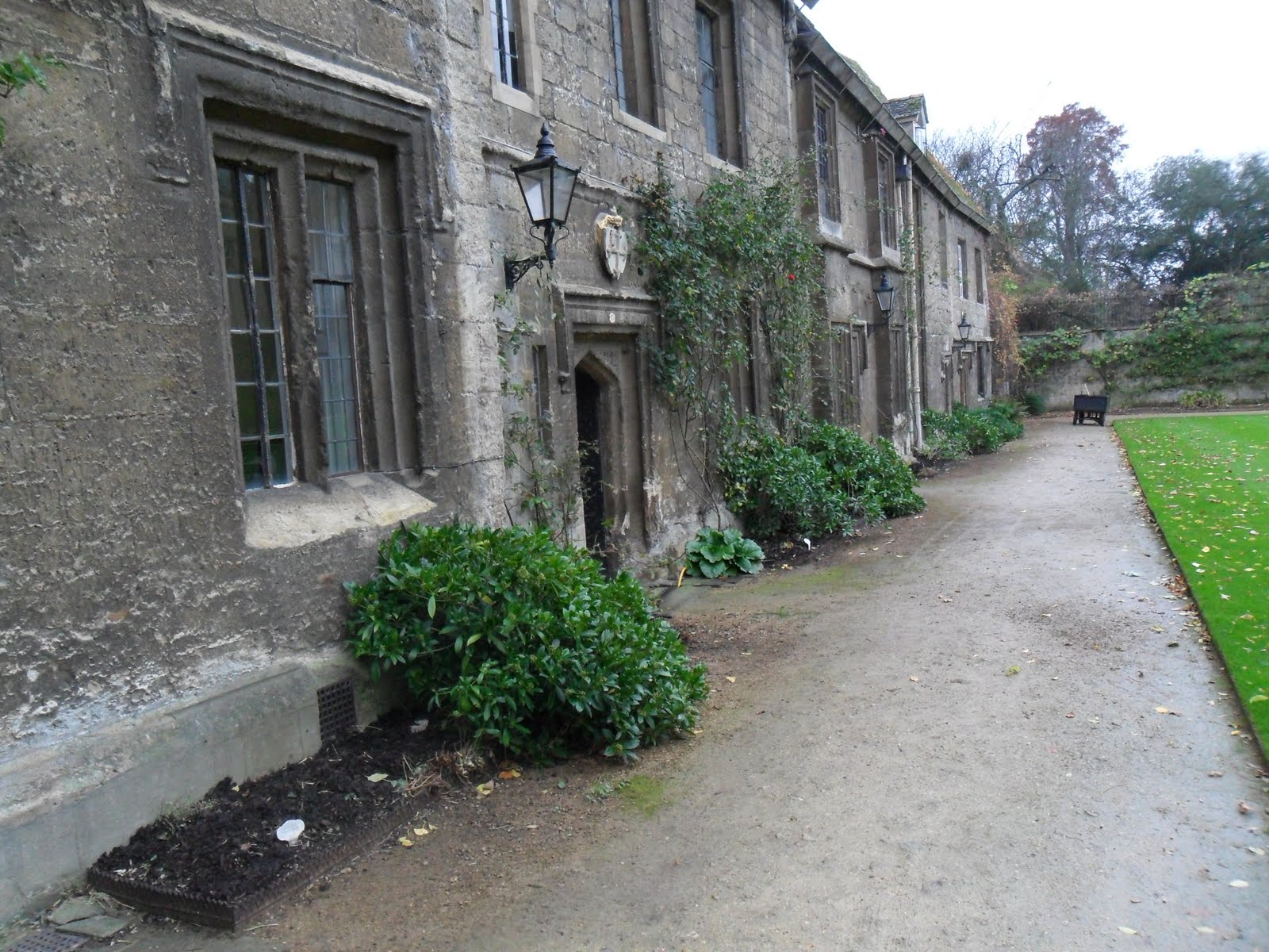 Worcester College Gardeners Let Sleeping Hedgehogs Lie