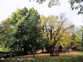 Babia-otoño