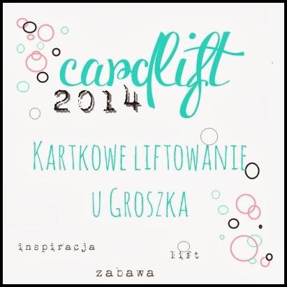 Cardlift 2014