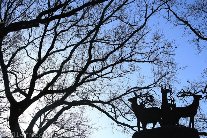 arbres forêt silhouettes cervidés statue Gardien forêt Rougeau Sénart