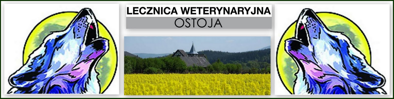 Lecznica Weterynaryjna Ostoja Jelenia Góra,weterynarz Jelenia Góra,pogotowie weterynaryjne