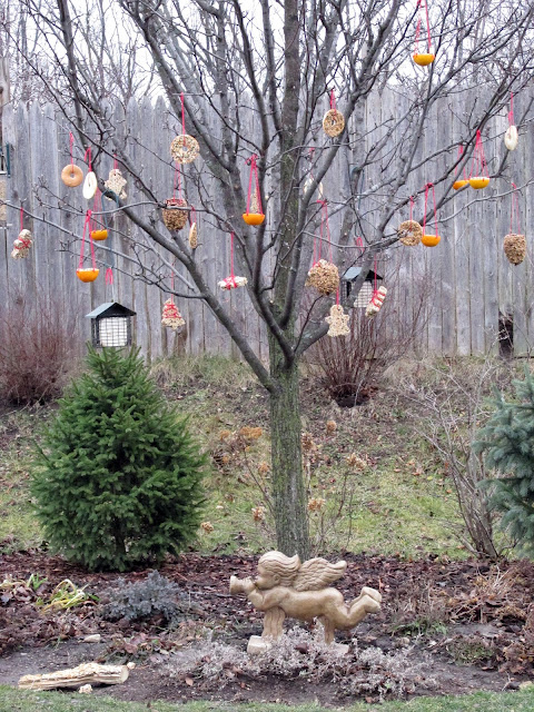 tree-with-birdseed-ornaments