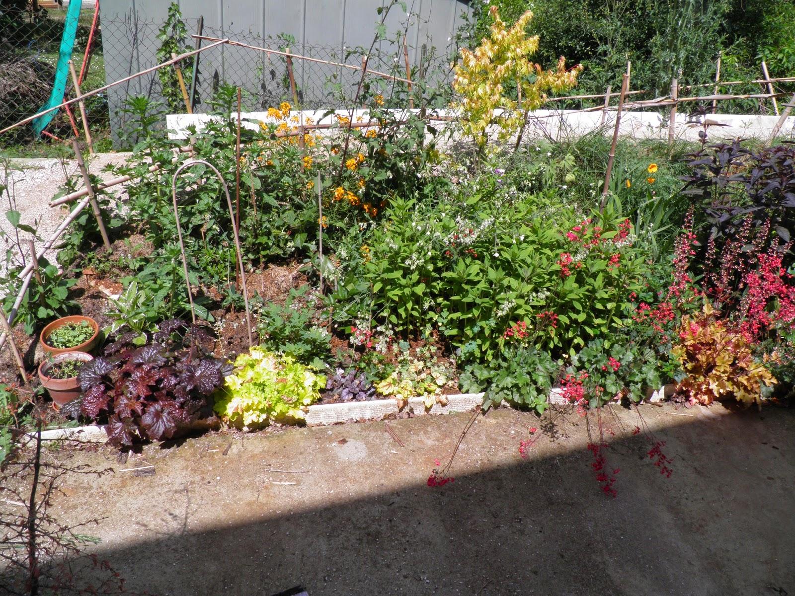 Mon jardin quercynois ambiance de mai for Le jardin imparfait