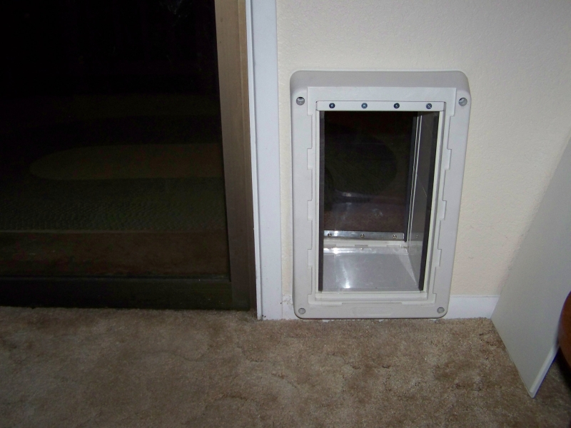 Homemade Dog Door
