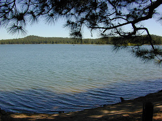 Well off the beathen path northern california lakes for Lake hennessey fishing