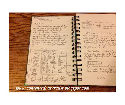 Handwritten journal entry including a sketched map