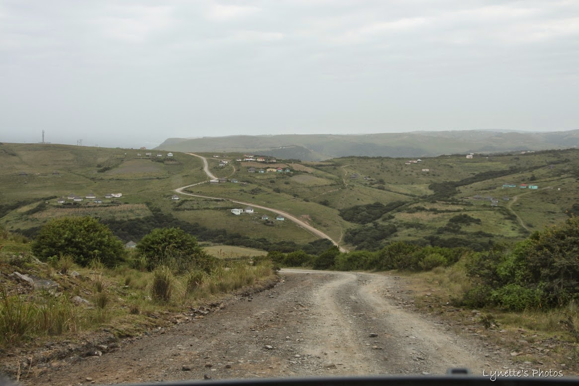 Coffee bay road
