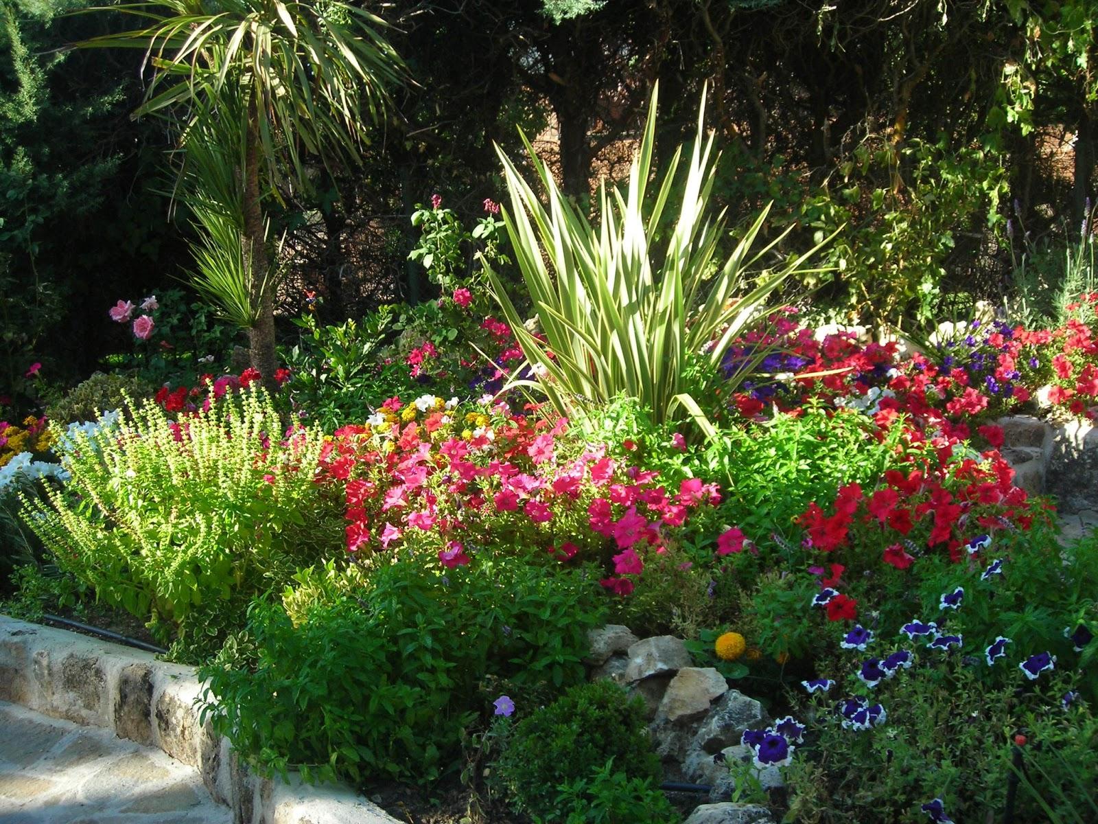 en el Cibelespacio: DE MI BAÚL  Decora con plantas medicinales #993F32 1600 1200