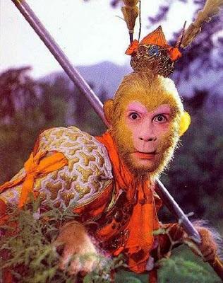 الركون إلى الدنيا يحول الانسان لقرد