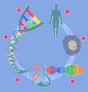 Que es la epigenetica
