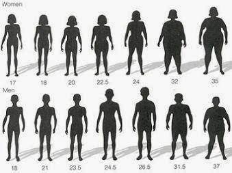 Tools Cara Menghitung Berat Badan Ideal Online BMI Tepat dan Terbaik