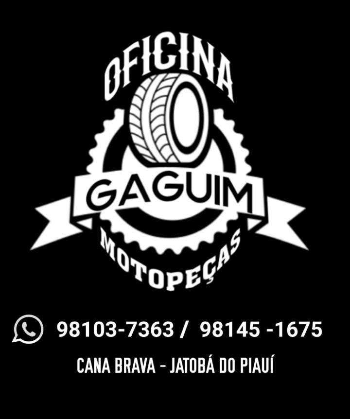 OFICINA DO GAGUIM