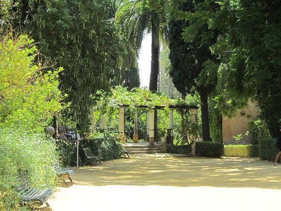 Design Swirl: Paradise: A Glimpse of the Persian Garden