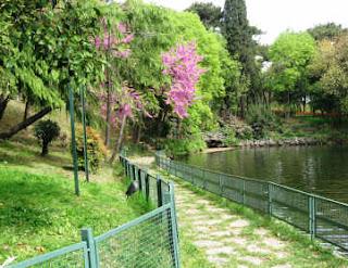 الأماكن السياحية اسطنبول الصور bahce-doga46.jpg