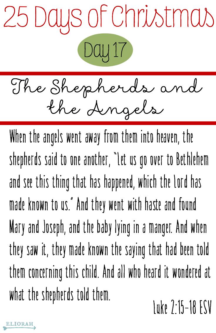 25 Days of Christmas: (Day 17) Luke 2:15-18