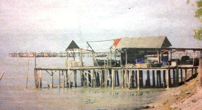 Tanjung Sepat Waterfront dwelling